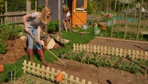 Draper Gardening